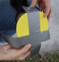 "Picture of 1930 Duct Tape Pad: 2"" x 3"""